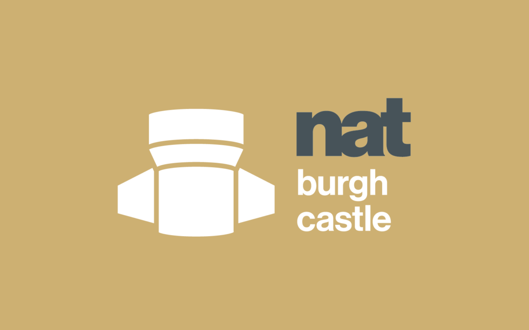 Visitor surveyor – Burgh Castle Fort