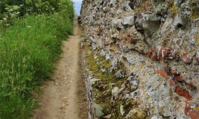 Conservation repairs at Burgh Castle Roman Fort starting November 2019
